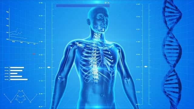 Células óseas